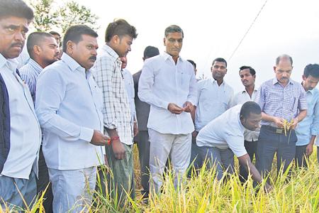 Harish Rao inspect Rain hit areas in  Medak district