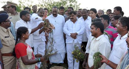 Naini Narsimha Reddy & Mahendar Reddy visits rain affected areas in ranga reddy district