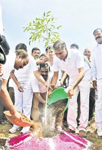 Harish-Rao-planting-a-sapling01